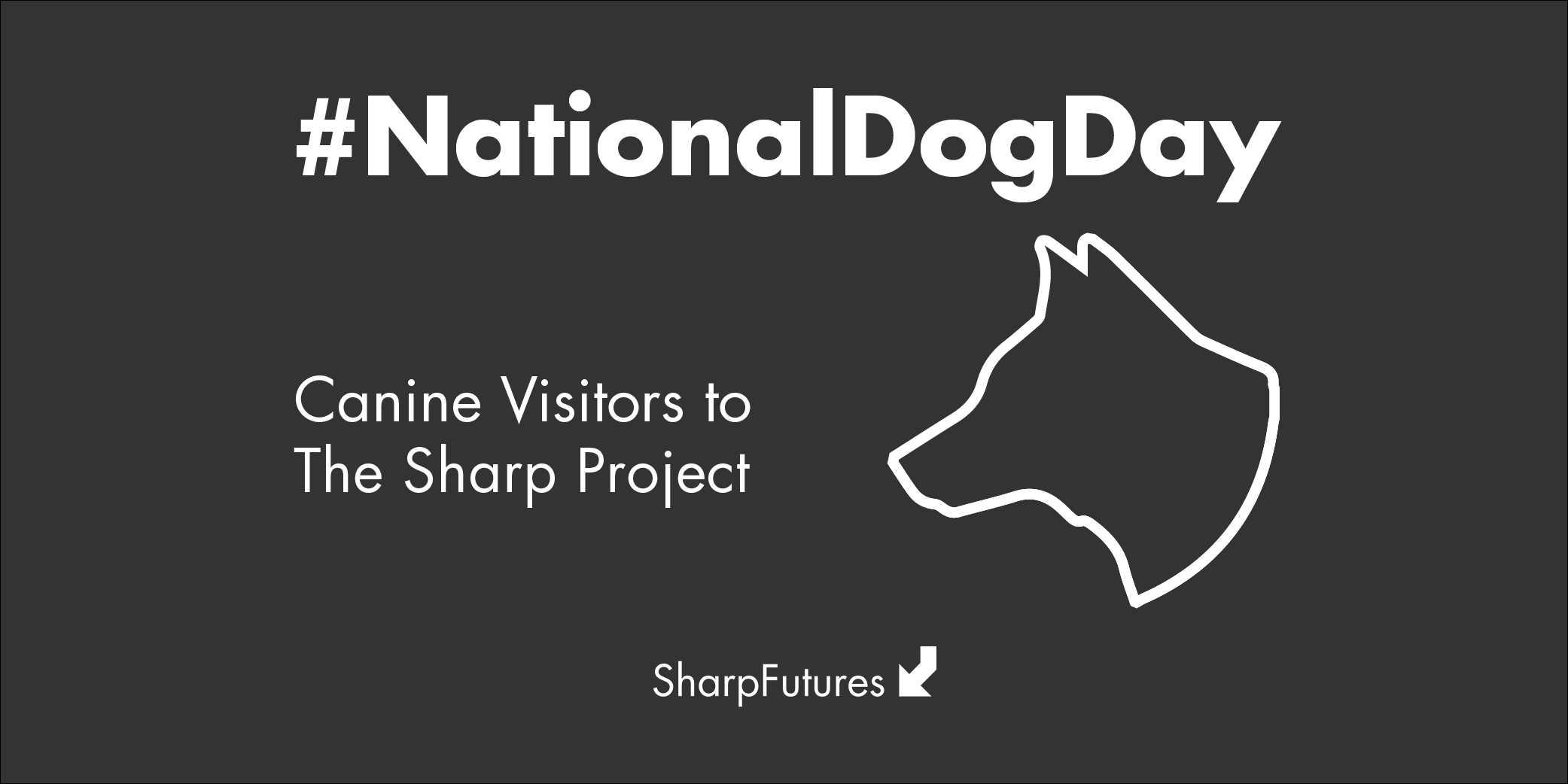 nat_dog_day